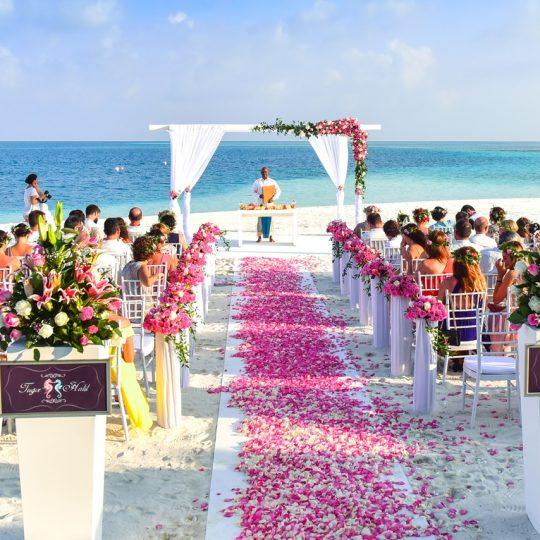 Enchanted Bahamas wedding